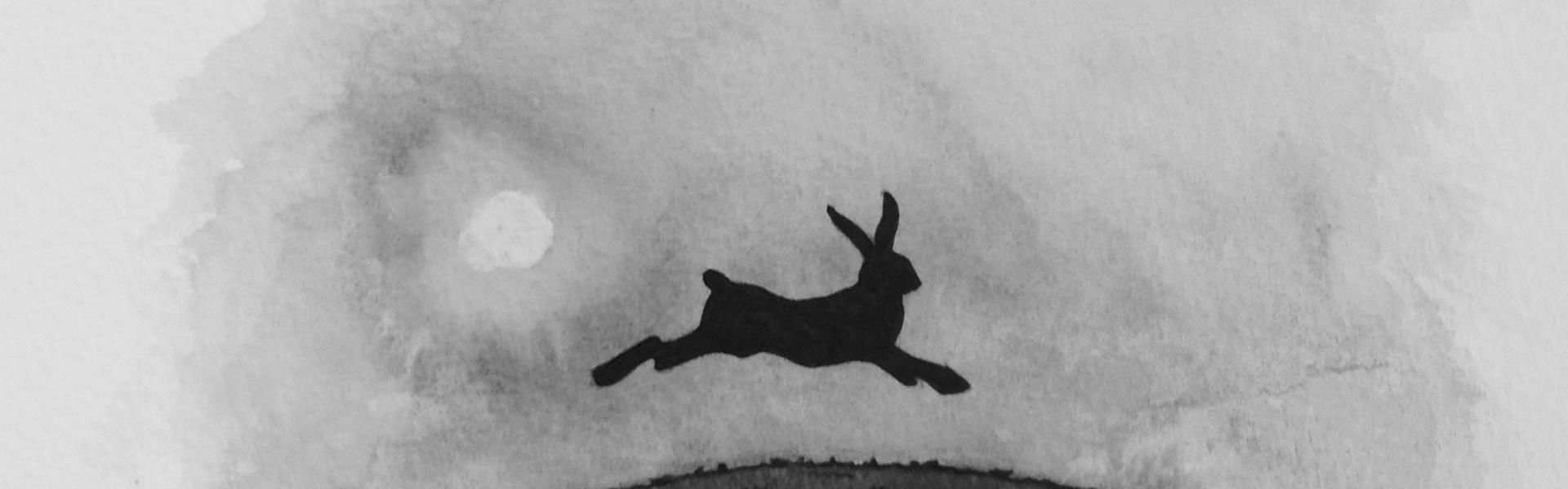 British wildlife hare running over hill detail