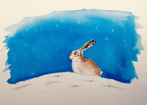 Night Time Hare print